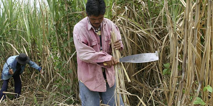 Handelspartner ATC, Philippinen