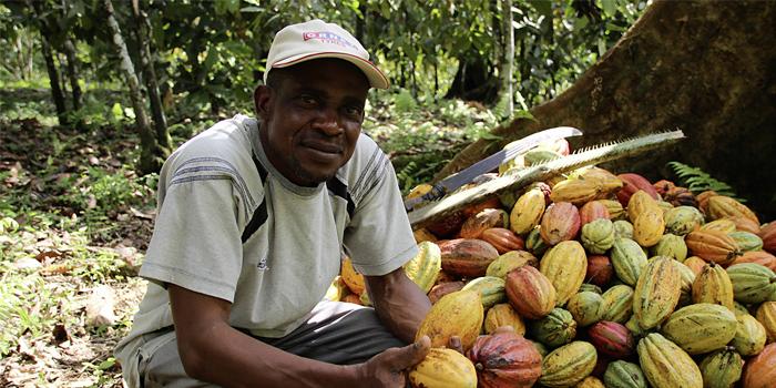 Handelspartner KONAFCOOP, Kamerun